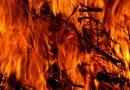 Klarsynt farmen deltaker brent på bålet